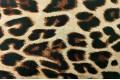 Армани шёлк Леопард на бежевом, крупный рисунок