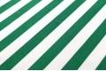 Джинсовая ткань белая и зеленая полоска