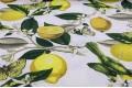 Дак (DUCK) Лимоны