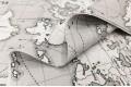 Дак (DUCK), Карта мира на сером фоне, 180 см