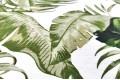 Дак (DUCK) зеленые листья